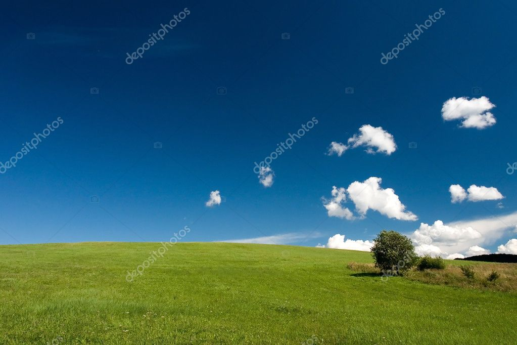 Summer abstract landscape