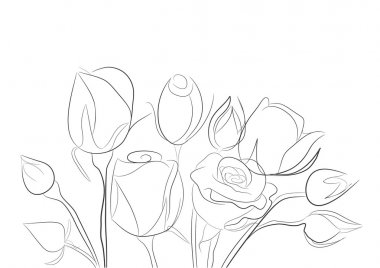 Sketch with rose