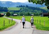 Stavgångpro nordic walking