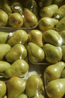 Shrink-wrapped trays of Bartlet pears