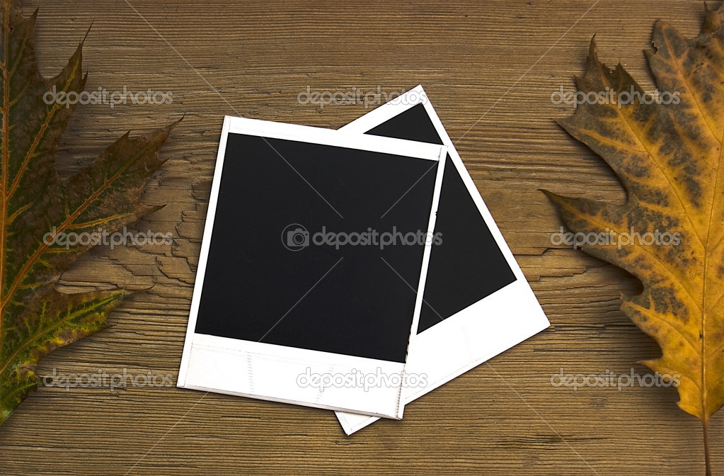 Polaroid frames over autumn background