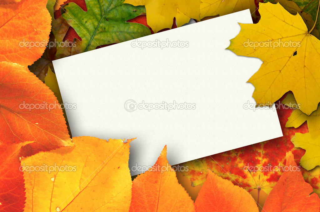 Balnk autumn card