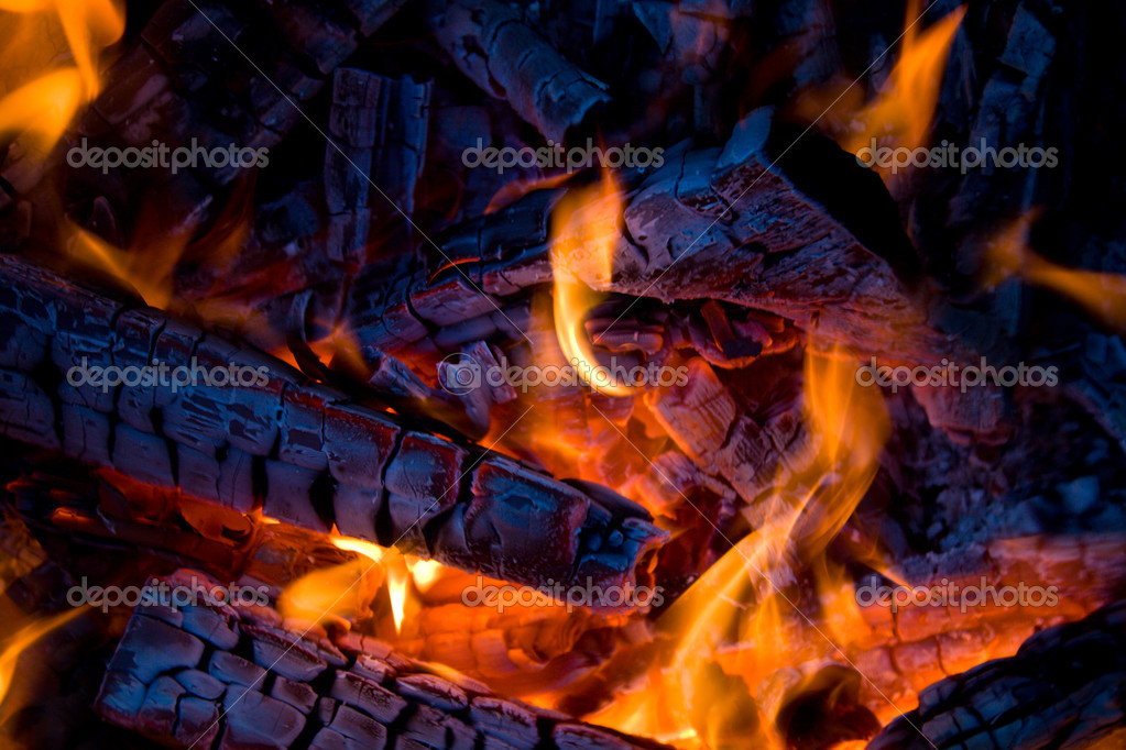 Close-up firewood in fire