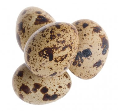 Four quail eggs in pyramid