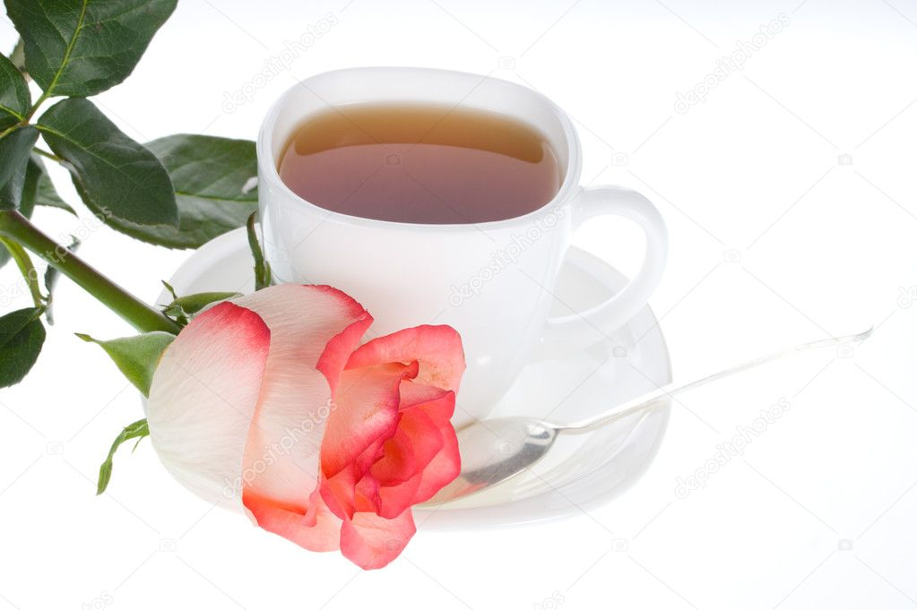 Red white rose and cup of tea