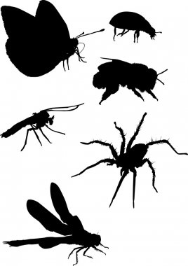 Mosquito and other insect silhouettes