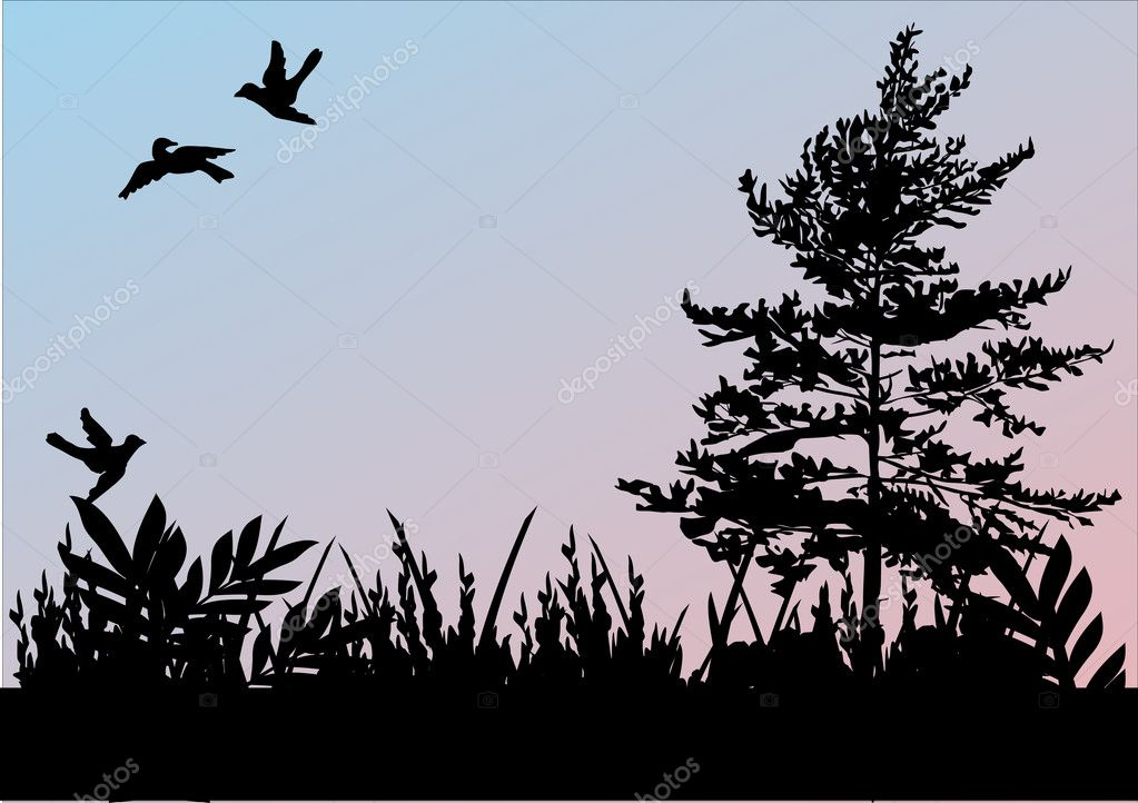 Three birds, grass and tree
