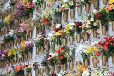 Cemetery in Tenerife, Spain