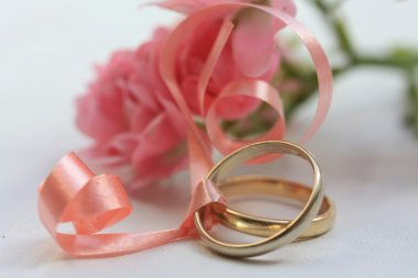 Wedding bands and pink roses