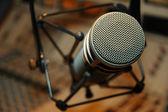 Photo Microphone detail