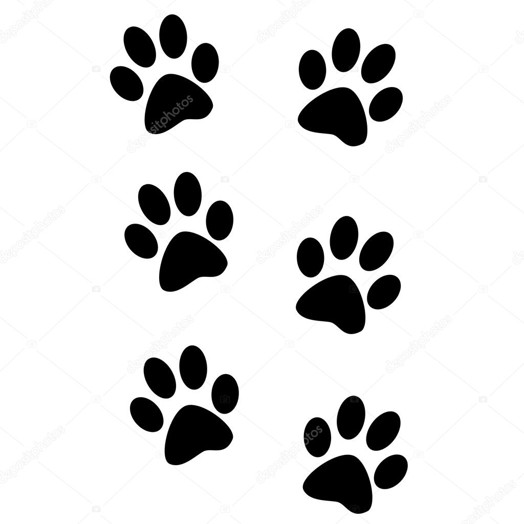 Isolated animal footprints — Stock Photo © pdesign #1765638