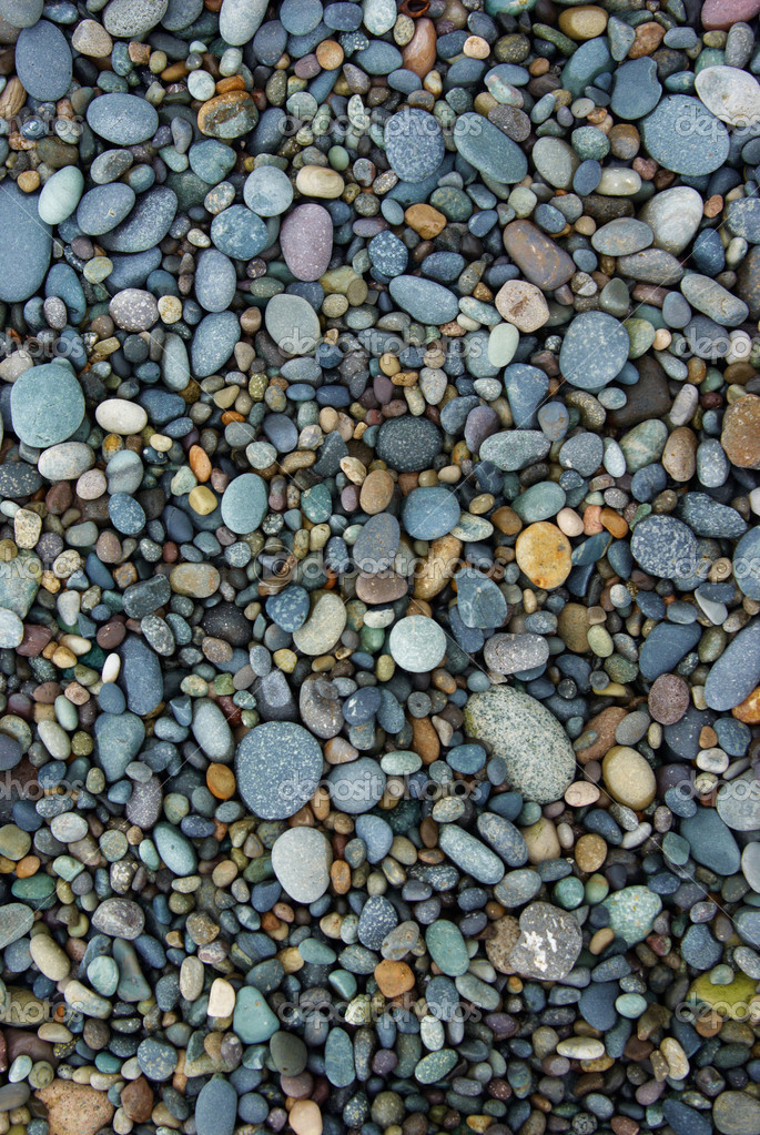 Shiny Wet Multicolored Pebbles on Beach
