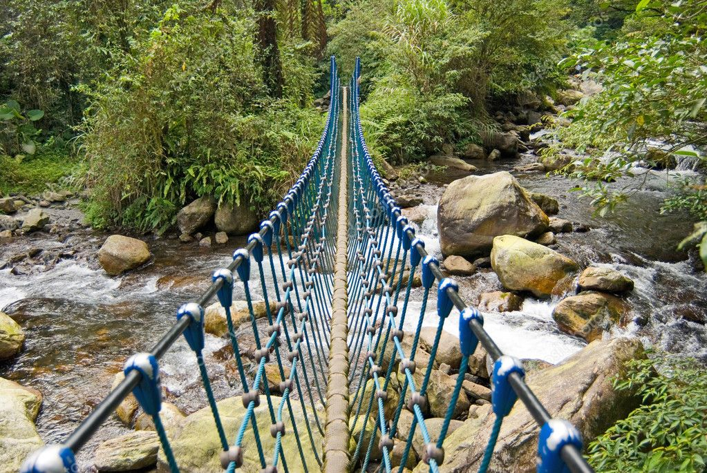 Single rope bridge