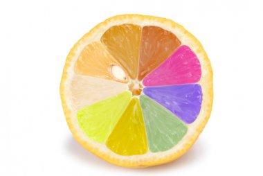 Isolated colorful orange fruit