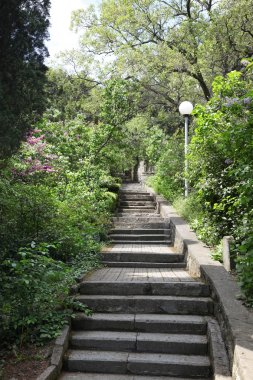 Stairs in the park of Kharaks