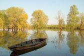 Barca in legno vecchio