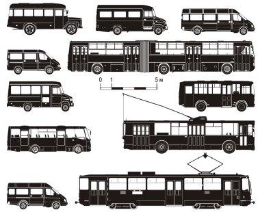 Vector hi-detailed public transportation