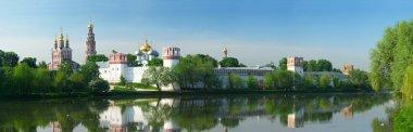 Novodevichy convent P
