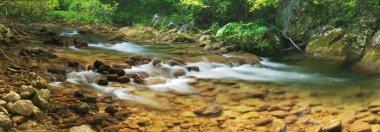 Mountain river (panorama)