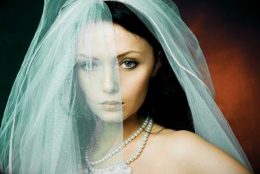 Misterious brunette bride wearing a veil