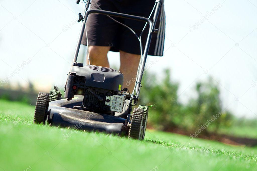 Tondre la pelouse photographie photocreo 2045772 for Tarif pour tondre pelouse