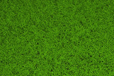 High resolution green grass background stock vector