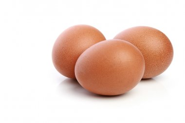 Three chicken eggs on a white background stock vector