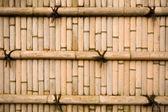 Wand-Bambus