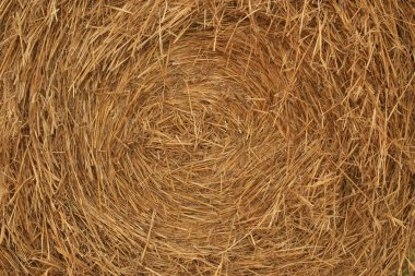 Closeup of a bale of hay