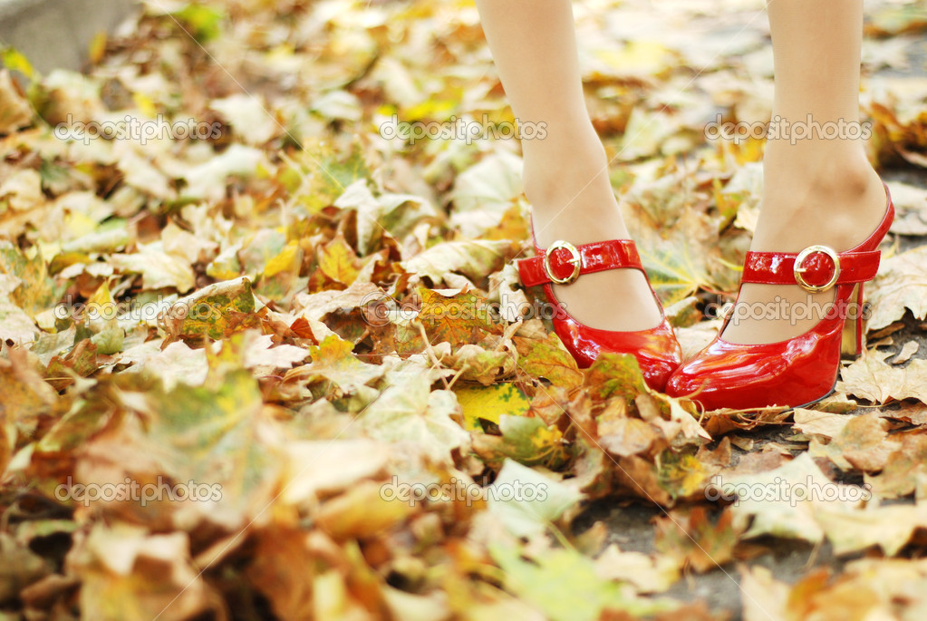Foliage and red shoes