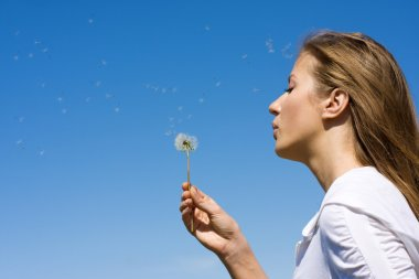 Blowing on dandelion