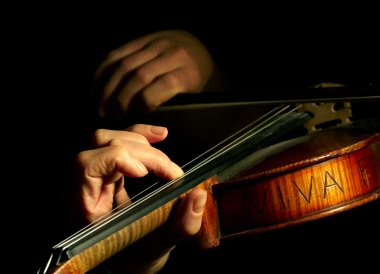 Musician playing violin isolated on blac