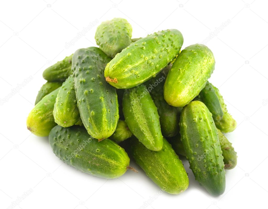 Ripe green cucumbers