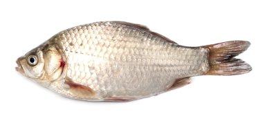 "Картина, постер, плакат, фотообои ""свежая рыба"", артикул 1880767"