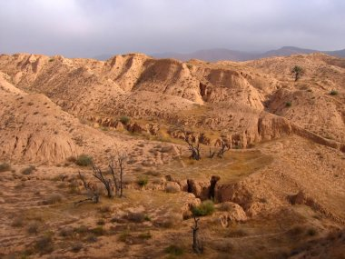 Desert landscape in Tunisia