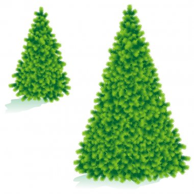 Bare christmas tree of two sizes