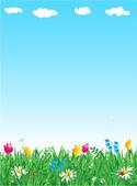 zelené trávě, modrá obloha, květy