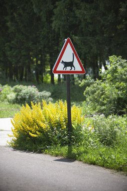 Road warning sign - cats are crossing here