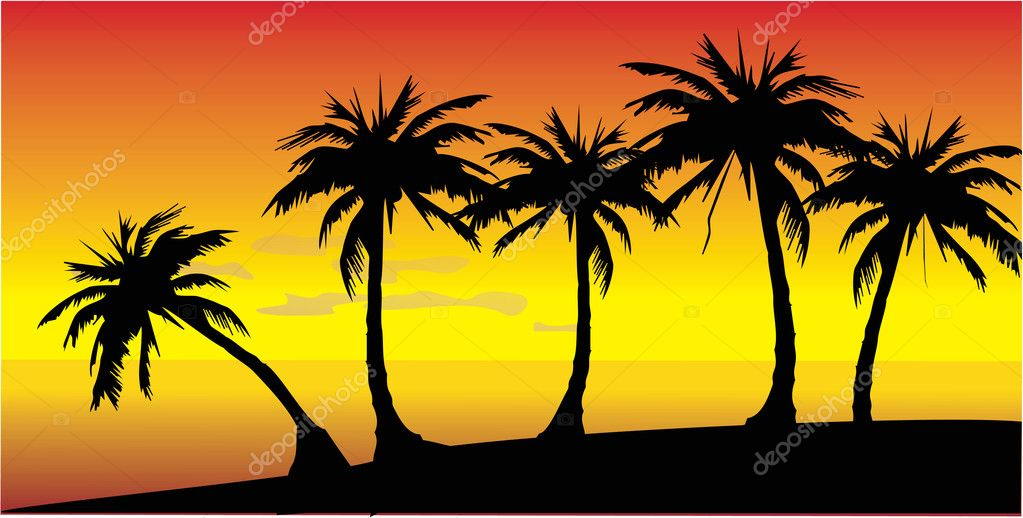 Decline on island with palm trees