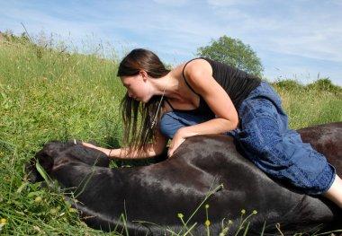 Horse lying down