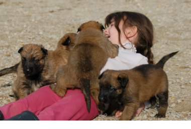 Girl and little puppies