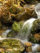 acqua di sorgente che scorre