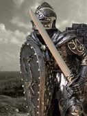 Lovagok  Armour