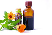 bylinné medicíny s bylinkami.
