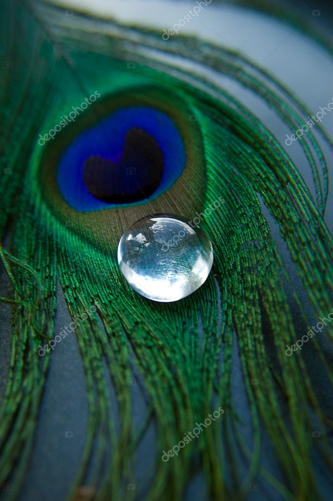 Peacock feather with glass stone