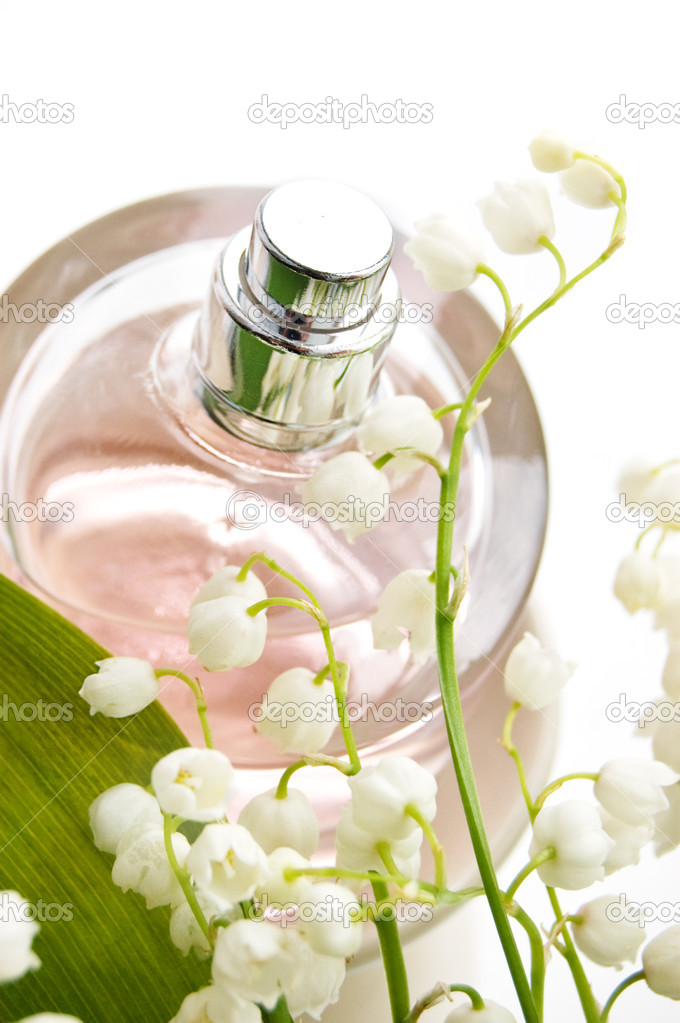Perfume and scent