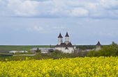 Photo Moldavian Monastery
