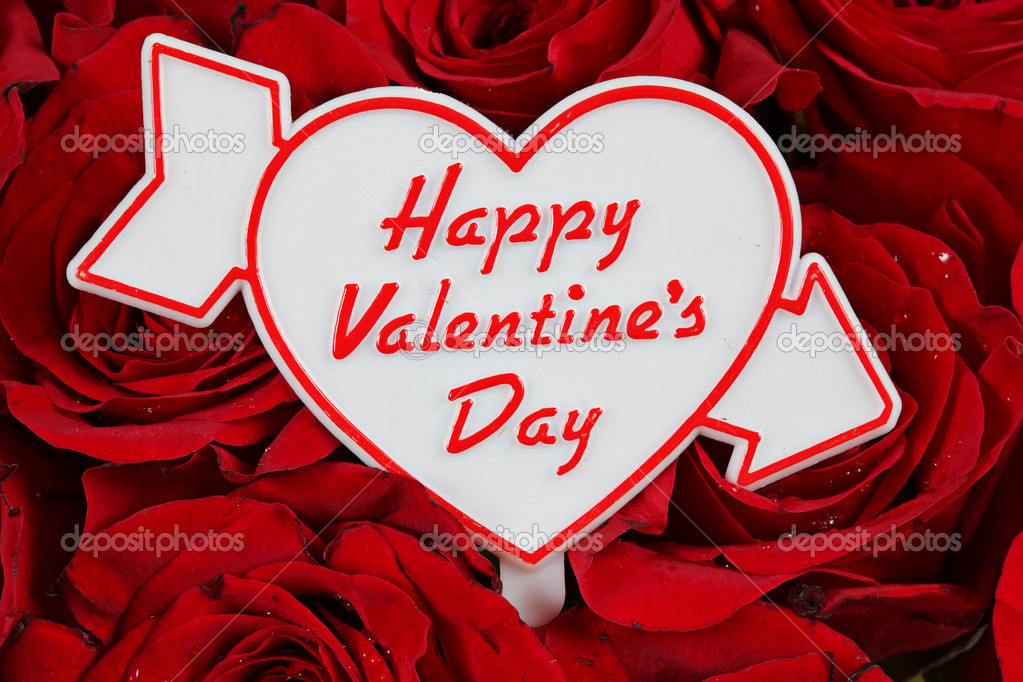 Happy Valentines Day Sign On Red Roses U2014 Stock Photo #2435937