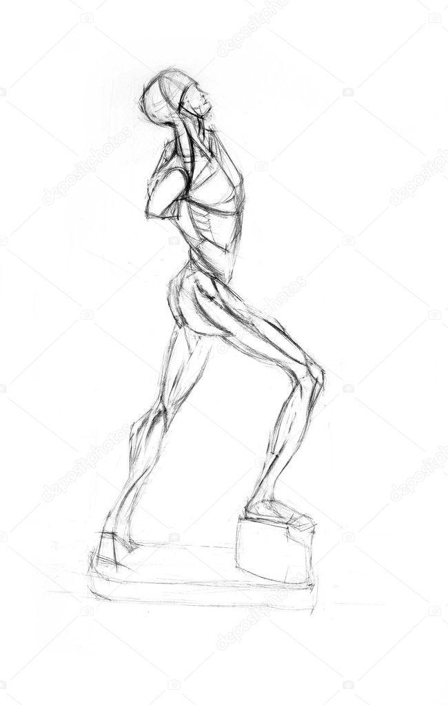 Torso Anatomie der Muskeln des Mannes — Stockfoto © Firststar #2232512