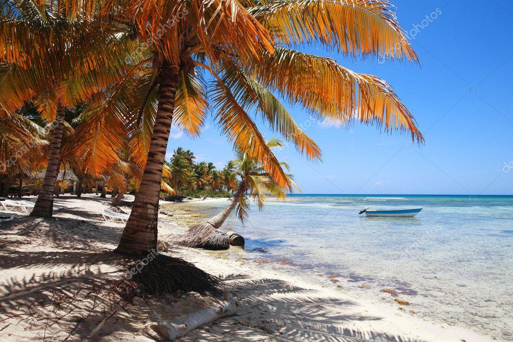 Tropical beach at Punta Cana